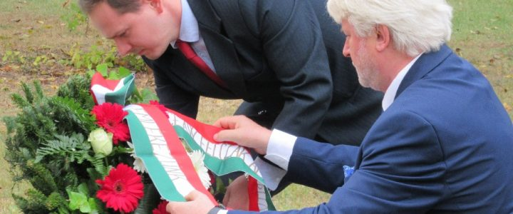 A közös szabadságért: a magyar-lengyel barátság ünnepe